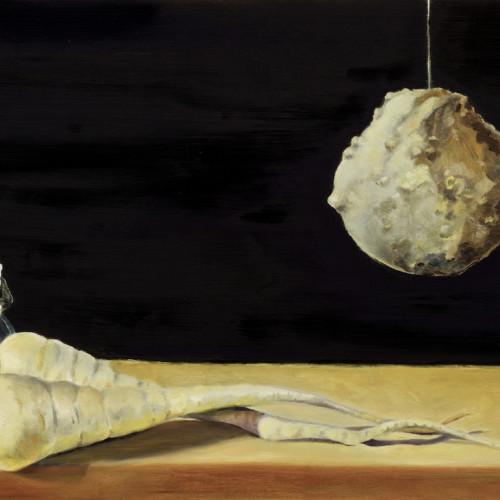 Untitled (parsnips, bearded lady, gourd), 2006, Oil on board, 40x60cm